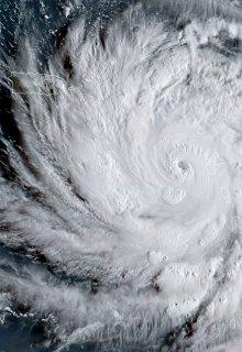 """Libro. """"Los diarios del huracán María """" Leer online"""