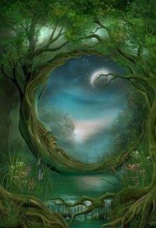 """Книга. """"Зачарованный лес"""" читать онлайн"""