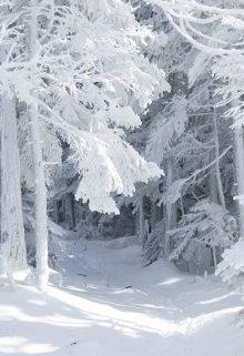 """Книга. """"Вечный снег"""" читать онлайн"""