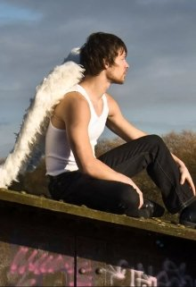 "Книга. ""Ангел на мосту"" читать онлайн"
