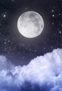 """Книга. """"Лунный принц"""" читать онлайн"""