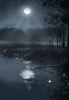 "Книга. ""Озеро ночи"" читать онлайн"