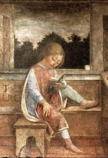 """Книга. """"Размышления на тему..."""" читать онлайн"""