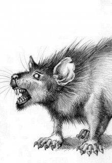 """Книга. """"Крыса """" читать онлайн"""