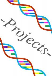 """Libro. """"Projects """" Leer online"""