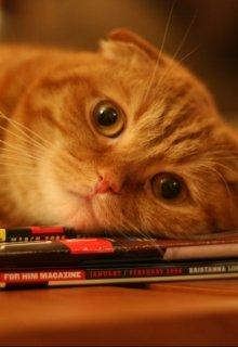 "Книга. ""Про лень"" читать онлайн"
