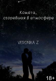 """Книга. """"Комета сгоревшая в атмосфере"""" читать онлайн"""