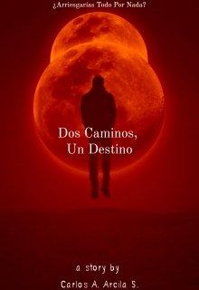 """Libro. """"Dos Caminos, Un Destino"""" Leer online"""