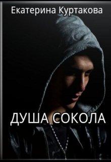 """Книга. """"Душа Сокола"""" читать онлайн"""