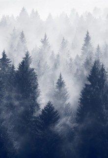 """Книга. """"Лунный туман и прочие неприятности для нового декана..."""" читать онлайн"""
