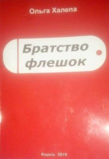 "Книга. ""Братство Флешок"" читати онлайн"