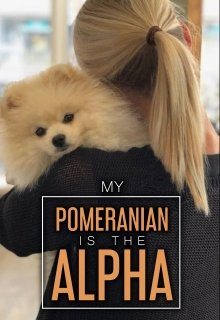 "Book. ""My Pomeranian is the Alpha?"" read online"