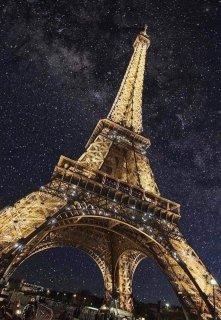 """Книга. """"Звёзды над Парижем"""" читать онлайн"""