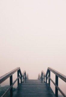 "Обложка книги ""Туман"""