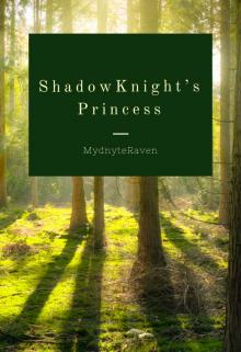 "Book. ""Shadowknight's Princess "" read online"