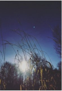 "Книга. ""Harvest Moon"" читать онлайн"