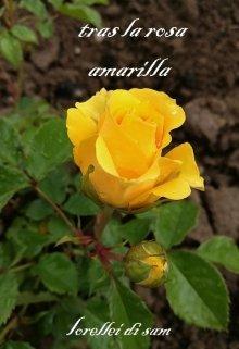 """Libro. """"Tras la rosa amarilla"""" Leer online"""