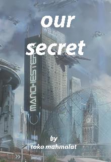 """Book. """"Our secret """" read online"""