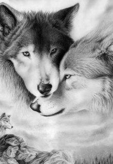 """Книга. """"Волчица. Жизнь в стае."""" читать онлайн"""