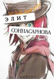 "Книга. ""Соннасарнова. Элит"" читать онлайн"