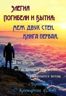 """Книга. """"Элегия Погибели и Бытия: Меж двух стен. Книга первая."""" читать онлайн"""