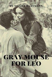 """Книга. """"Серая мышка для Льва"""" читать онлайн"""