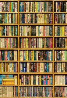 """Книга. """"Тэг """"Есть ли у меня такая книга"""""""" читать онлайн"""
