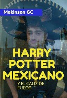 """Libro. """"Harry Potter Mexicano: Y El Cáliz De Fuego"""" Leer online"""