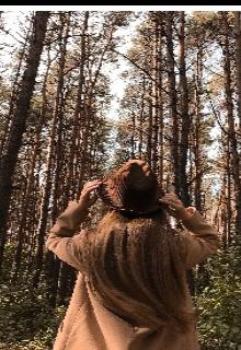 """Книга. """"Осеннее приключение"""" читать онлайн"""