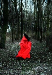 """Книга. """"Обратная сторона сказок. Красная шапочка"""" читать онлайн"""