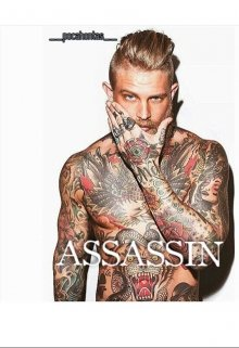 "Книга. ""Assassin "" читать онлайн"