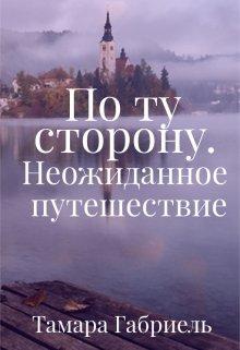 """Книга. """"По ту сторону. Неожиданное путешествие"""" читать онлайн"""