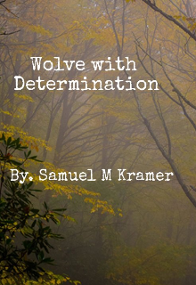 "Book. ""Wolf with Determination"" read online"