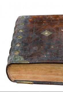 """Книга. """"Темный Лес"""" читать онлайн"""