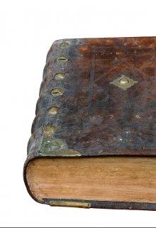 """Книга. """"Волчье поле"""" читать онлайн"""