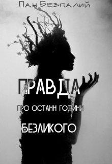 """Книга. """"Правда про останні години Безликого"""" читати онлайн"""
