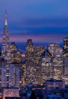 """Книга. """"Новая жизнь. Сан-Франциско."""" читать онлайн"""