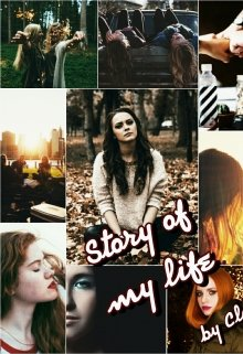 "Книга. ""Story of my life: High school"" читать онлайн"