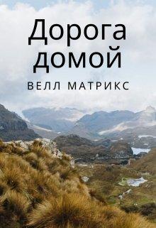 "Книга. ""Дорога домой"" читать онлайн"