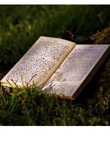 "Книга. ""Артефакт в поисках хранителя"" читать онлайн"