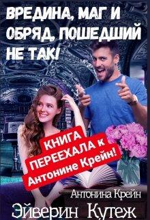 "Книга. ""Вредина и маг Переехали!"" читать онлайн"