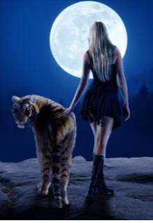 """Книга. """"Лес, кот и чувство справедливости"""" читать онлайн"""