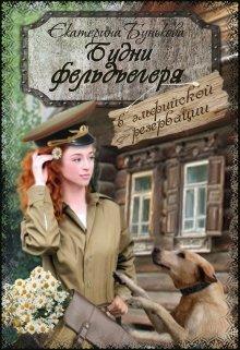 """Книга. """"Будни фельдъегеря в эльфийской резервации """" читать онлайн"""