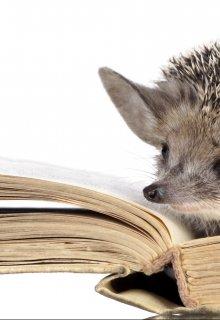 "Книга. ""Гандельвурд и Рохен-бахен"" читать онлайн"