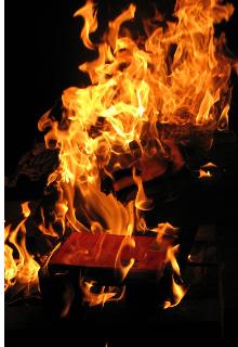 """Книга. """"Удушающий запах любви"""" читать онлайн"""