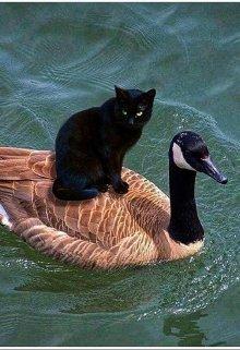 """Книга. """"Сказки Старой Ведьмы: Лебедь и Кошка"""" читать онлайн"""