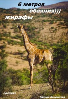 """Книга. """"Шесть метров обаяния. Жирафы"""" читать онлайн"""