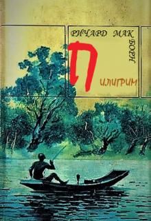 """Книга. """"Пилигрим (последний вопрос)"""" читать онлайн"""
