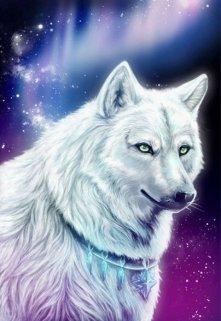 """Книга. """"Последняя из рода серебристых волков"""" читать онлайн"""