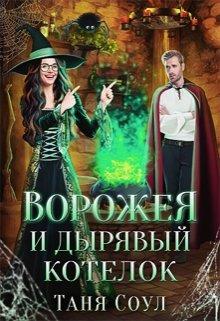 """Книга. """"Ворожея и дырявый котелок"""" читать онлайн"""